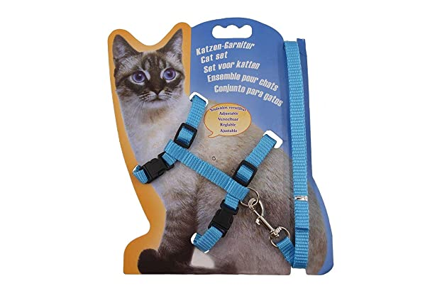 Best h harness for cats | Amazon.com
