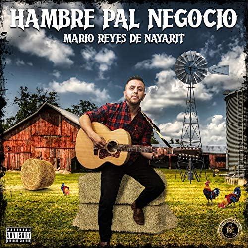 Mario Reyes de Nayarit
