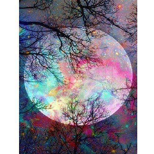 Dasongff doe-het-zelf voorbedrukte canvas-olieverfschilderij cadeau voor volwassenen kinderen schilderen op nummerskits huis decoratie - abstract bont maan 40 * 50 cm 40x50cm multicolor