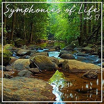 Symphonies of Life, Vol. 57 - Carulli: Guitar Concertos