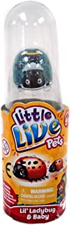 Little Live Pets - LIL LADYBUG and BABY Single Pack - Rare Blue RAINBOW SPOTS