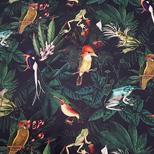 Werthers Stoffe Stoff Meterware Baumwolle Frosch Vogel Digitaldruck Fotodruck Frösche Vögel