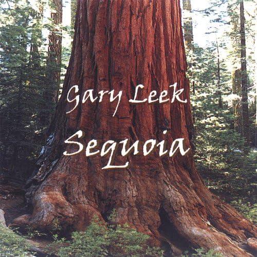Gary Leek