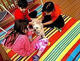 BalajeesUSA 2 Stück 152 x 20188 wendbare Teppiche für drinnen und draußen, aus Kunststoff, Stroh-Teppich, Campingmatte, Strandmatte, Terrassenteppich, Großhandelspreis - 3