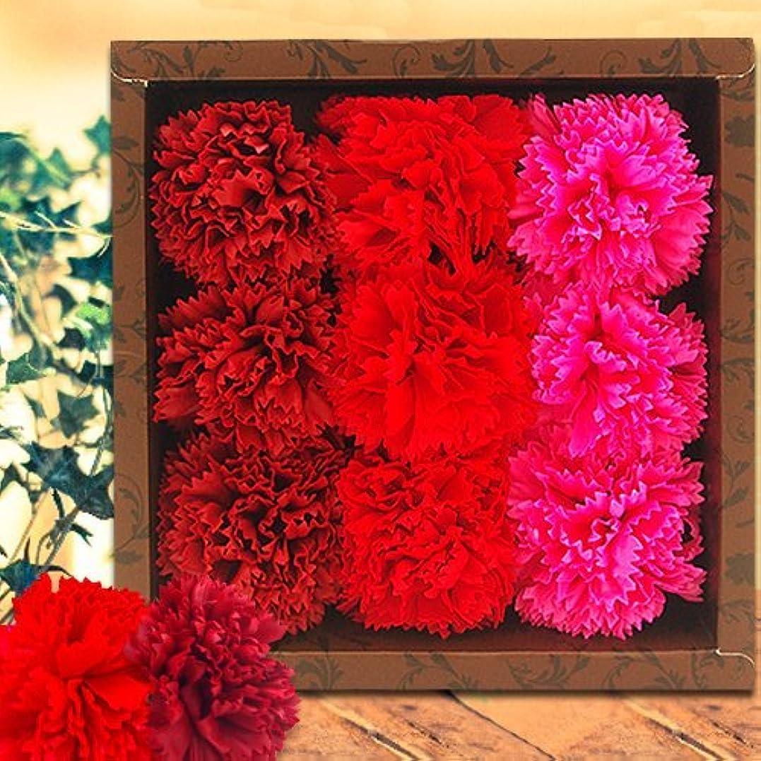 高く知覚するスペースフラワーフレグランス(Carnation/Red)