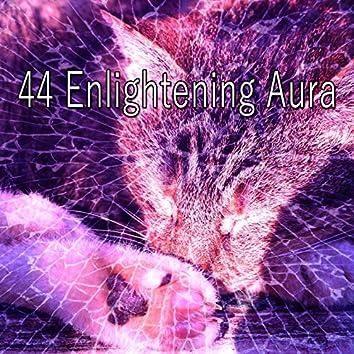 44 Enlightening Aura