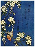 ArtPlaza Hokusai Katsushika-Bullfinch and drooping Cherry Panel Decorativo Madera MDF, Multicolor...
