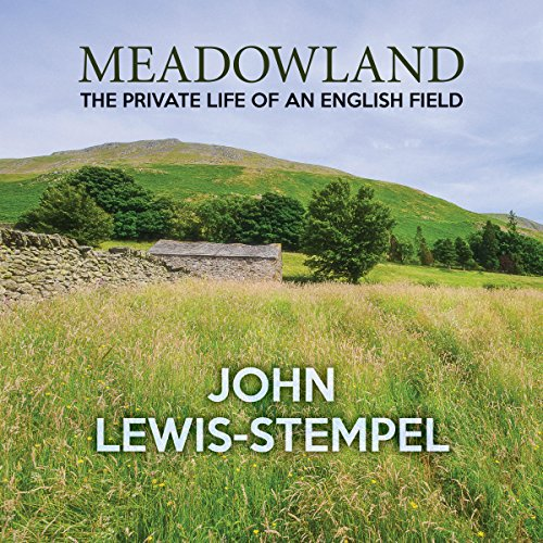 Meadowland audiobook cover art
