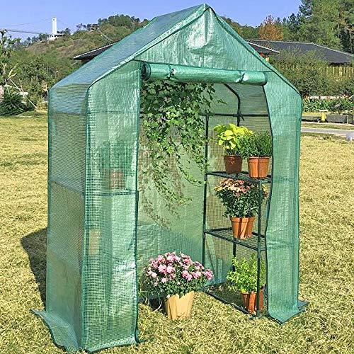 LeJoy Garden Greenhouse Indoor Outdoor Grow Plants, Seedlings, Herbs, Or Flowers (Big)