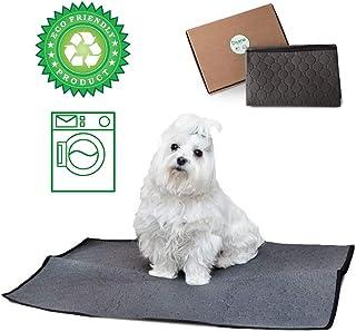 DISANE EMPAPADOR Perro Lavable Y Reutilizable 100 x 67cm Gris | Empapadores para Perros y Gatos Lavables a máquina respetuosos con el Medio Ambiente | Entrenamiento Cachorros, Mascotas Convalecientes