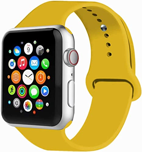 Correa Apple Watch 42mm Series 3