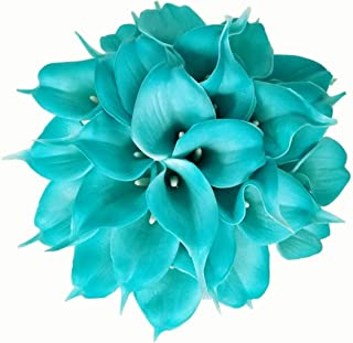 blue calla lily