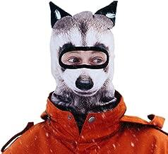 Beardo Balaclava Ski Mask, Raccoon