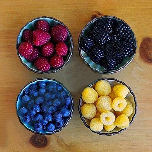KINGDUO 400 Pcs/Pack Couleur Mélangée Framboise Graines Chaque 100 Pcs pour Les Semences De Bleu De Fruits Jaune Noir Rouge