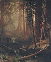 Berkin Arts Albert Bierstadt Giclee Art Paper Print Art Works Paintings Poster Reproduction(Giant Redwood Trees of California)