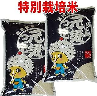 令和 元年産 新米 特別栽培米 福岡産 元気つくし 10kg (5kg×2袋) 嘉穂農協指定 (白米精米 約4.5kg×2袋でお届け)