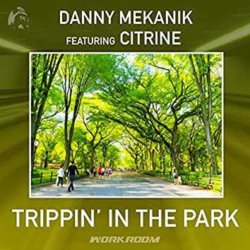 Trippin' In The Park