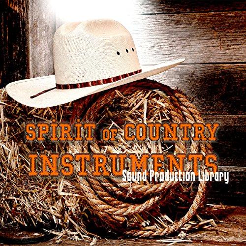 Country Instruments – Perfektes Original Wellenproben auf DVD