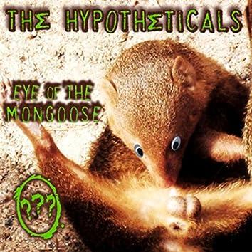 Eye of the Mongoose