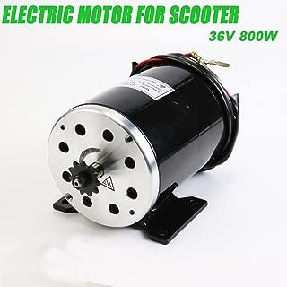 800 W 36V DC Electric Motor For Scooter Go-kart Minibike E-ATV