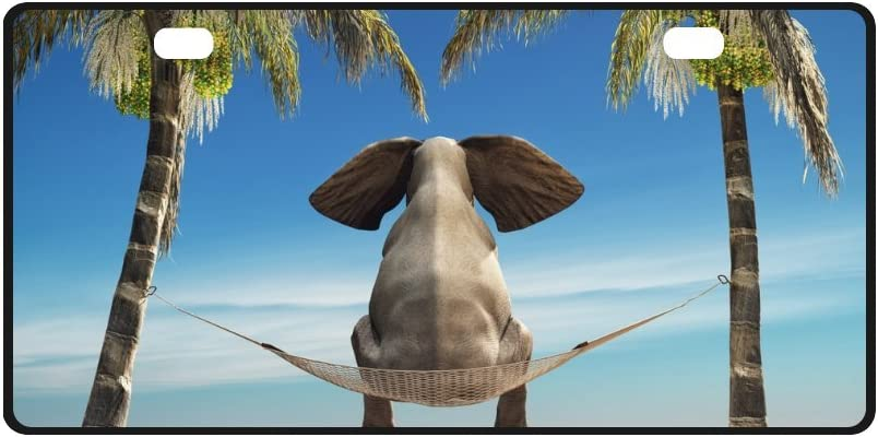 INTERESTPRINT Discount mail order Funny Elephant on Tropical Beach Me Tree with Palm Mesa Mall