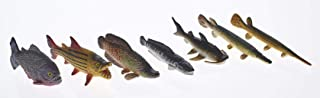 River Monster Collection Ltd Edition   Piranha Toy   Toy Catfish   Alligator Gar   Fish Set   Finest Collector/Travel Case   Limited Edition Fish Toy Figurines by Toy Fish F