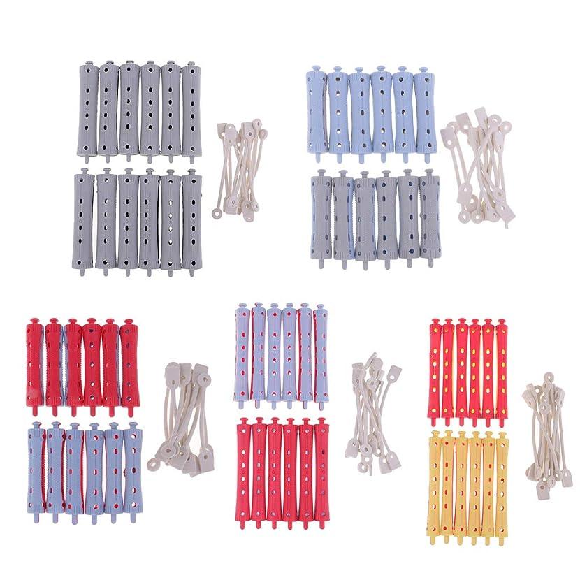 文字食器棚ナプキンP Prettyia 約60個 ヘアカーラー パーマロッド クランプ プロ ヘアーサロン 自宅用