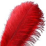 Pluma de la pluma de la avestruz natural 20pcs pluma de 10-12inch (los 25-30cm) para los centros de mesa de la boda decoración del hogar (Rojo)