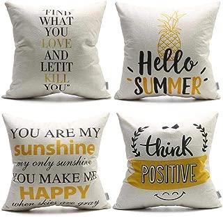 DANLIA Christmas Summer Time Throw Pillow Cover SolidColorPillowsSetof4 18