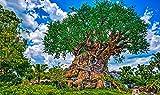 LFNSTXT Rompecabezas para adultos, 1000 piezas, diseño de Disneyland Parks California Anaheim para adultos, familias y niños. Juguete educativo para decoración del hogar (70 x 50 cm)