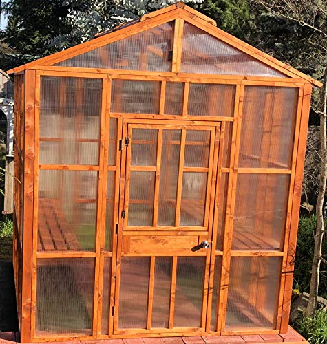 NW Green Panels Large Walk-in Greenhouse, 8X8 Outdoor Gardening Organic Cedar Greenhouse, with All Wood and 8mm pollycabonate framing with Dutch Door