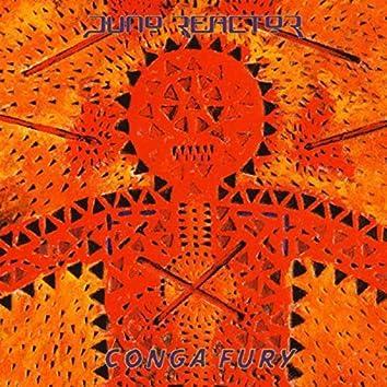 Congo Fury