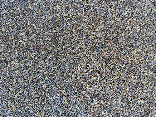 Premium Chicken Poultry Pasture Forage and Fodder Seeds (5-lb. Bag) - [33% Each: Clovers, Supplemental, Grains]