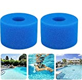 Renuy - Esponja filtrante tipo S1 – Juego de 2 filtros de esponja de cartucho, espuma para filtro de piscina, filtro de espuma con cartucho de esponja lavable para piscinas y jardín al aire libre