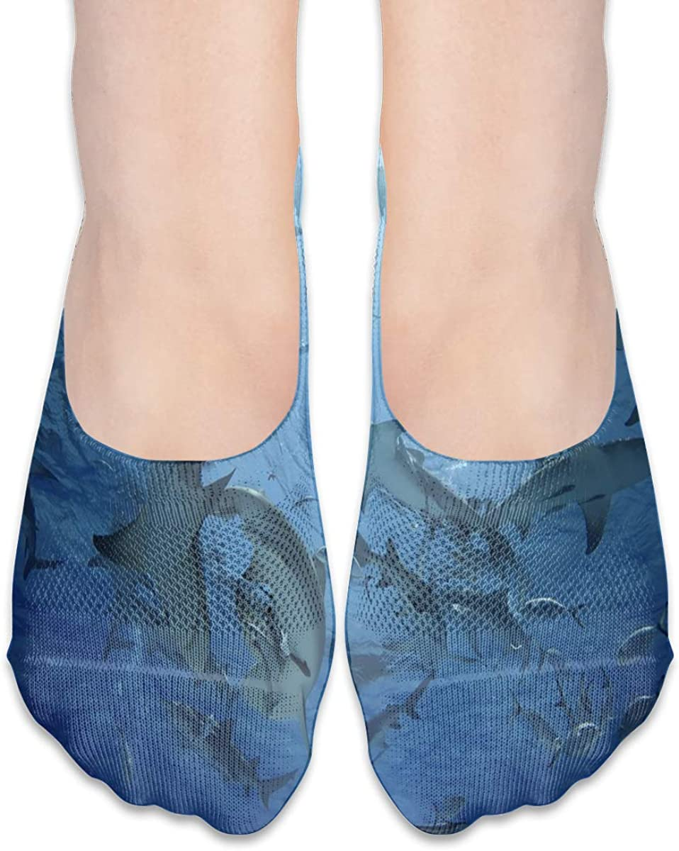 No Show Socks Women Men For Underwater World Funny Shark Flats Cotton Ultra Low Cut Liner Socks Non Slip