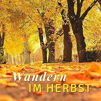 Wandern im Herbst: Sanfte Melodien um Spaziergänge in der Natur zu Begleiten und Inneren Frieden zu Finden