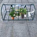 Piccola serra fiore Shed Flower stand mini Flower House isolamento Room multi-meat serra piante grasse Shed Rain tendone con copertura trasparente