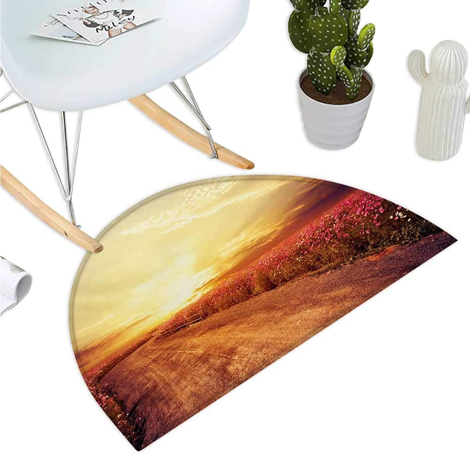 Scenery Half Round Door mats Floral Theme Landscape of Cosmos Flower Field in Sky Sunset Illustration Entry Door Mat H 43.3  xD 64.9  orange and Yellow