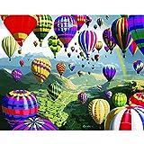 ZXDA Globo de animación Pintura Digital al óleo de Bricolaje por Kits de números Pintura acrílica Abstracta por números para Frameless para Arte de Pared A1 50x65cm