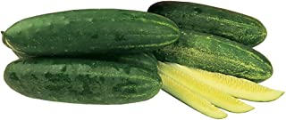 Best burpee hybrid cucumber Reviews
