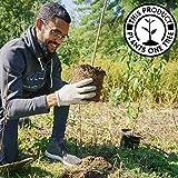 EcoSlurps Wiederverwendbare Essstäbchen Geschenkset | Erwachsene & Kinder Umweltfreundliche Strohstäbchen aus recyceltem Weizenstroh | Spülmaschinenfeste Alternative aus Holz, Kunststoff und Metall - 3