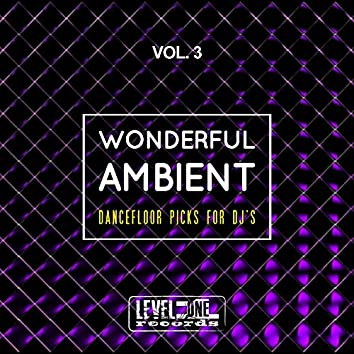 Wonderful Ambient, Vol. 3 (Dancefloor Picks For DJ's)