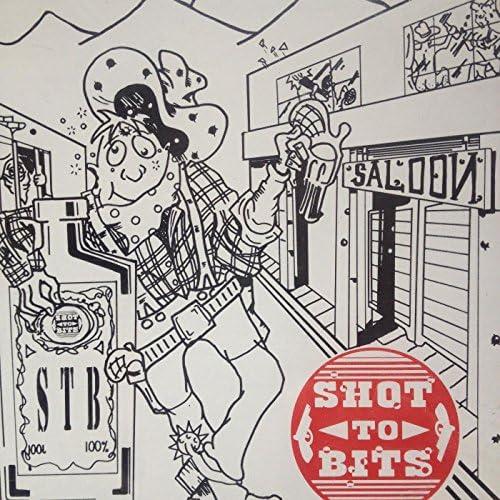 Shottobits