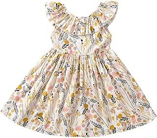 Kids Baby Girl Floral Dresses, Toddler Ruffle Wildflower Skirt Outfit Sundress