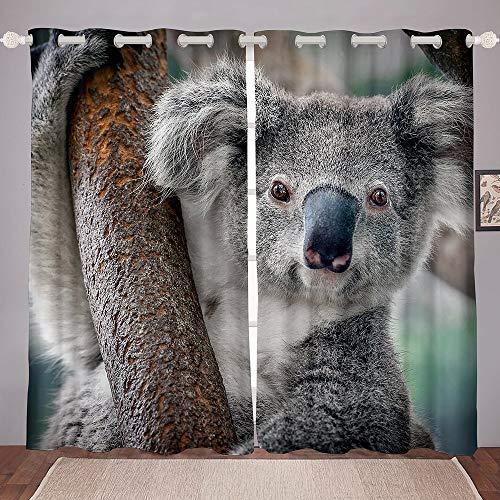 Kara Gray Transparent Fenstervorhang 175x140cm Nettes Tierthema Vorhänge Voile für Schlafzimmer und Wohnzimmer Tier-Thema Schön Gardine Farbverlauf Fenster Vorhänge 2er-Set Fenster Vorhänge
