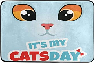 Kailey hello It's My Cats Day Doormat, Entry Way Indoor Outdoor Door Rug with Non Slip Backing, (23.615.7-Inch)
