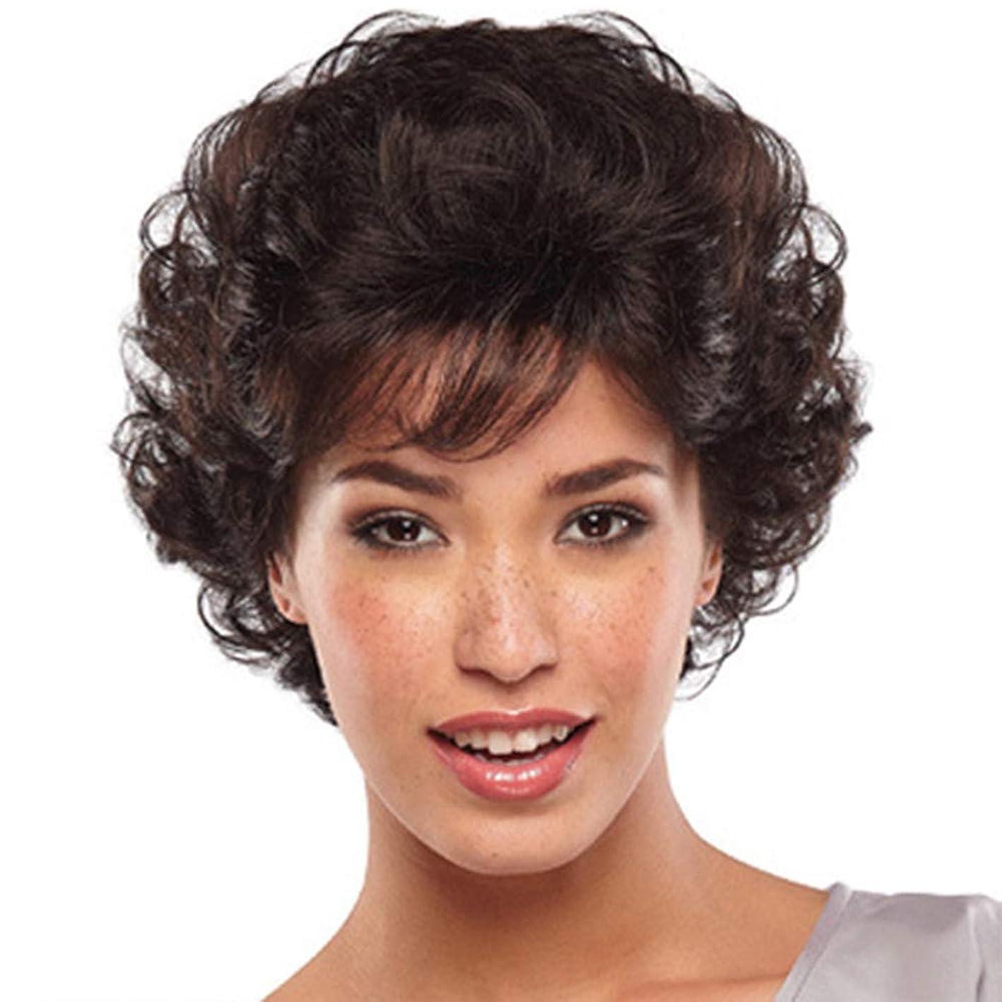 うまれた害外観女性かつら180%密度耐熱合成少量爆発ヘッドショートヘアブラックローズヘアネット27cm