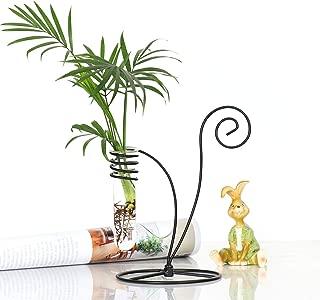 Ivolador Test Tube Vase Flower Pots with Metal Swivel Holder for Hydroponic Plants Home Garden Decoration