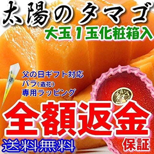 tt-1 宮崎産 太陽のタマゴ 秀品 2L 1玉約350g化粧箱入 マンゴー