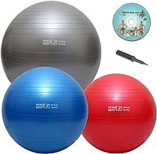 Argent Fgdjfh 95cm Ballon de Yoga Utilitaire de Musculation Gymnastique Massage Balles de Fitness Relax Ballons Musculaires Balance Sports /Épaissir Antid/érapant